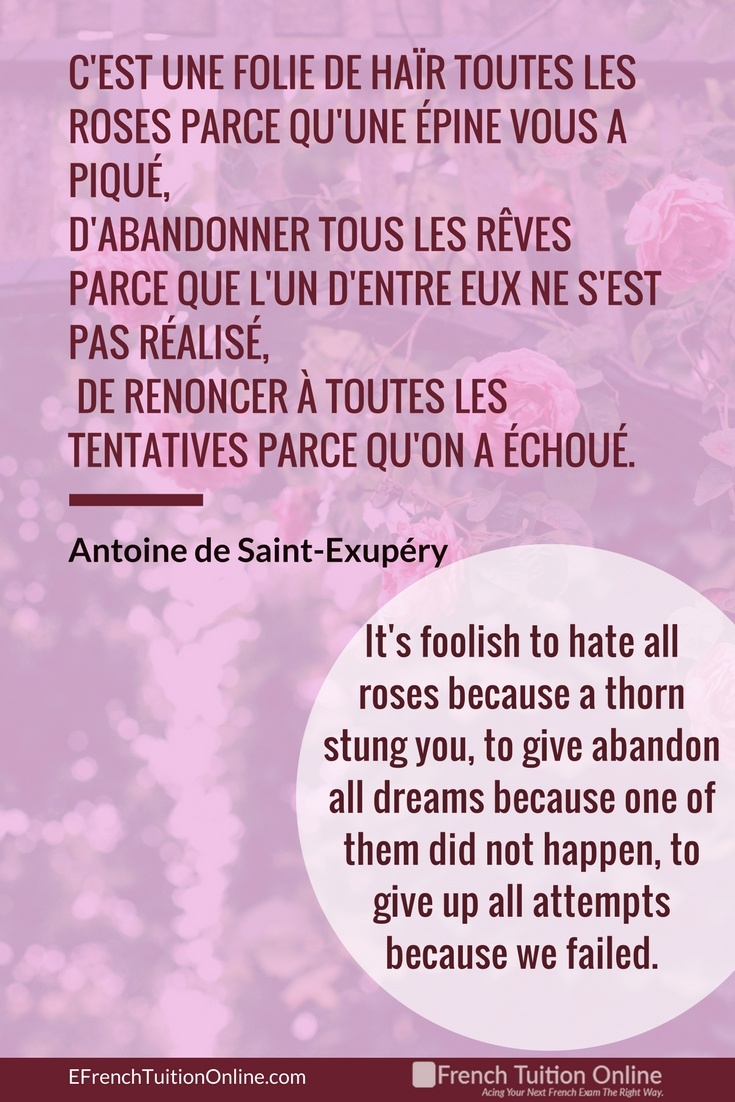 Kick Start Your French Quote of the week 20 - It's foolish to hate all roses because a thorn stung you, to abandon all dreams because one of them did not happen, to give up all attempts because we failed. Antoine de Saint-Exupéry.